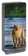 Cat On The River Portable Battery Charger