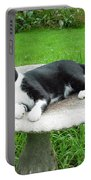 Cat Relaxing In A Birdbath In The Summertime  Portable Battery Charger