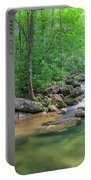 Catawba River Panorama  Portable Battery Charger