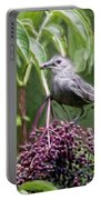 Catbird Portable Battery Charger