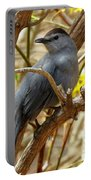 Catbird In Spring Portable Battery Charger