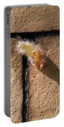 Caterpillar With Shadow Portable Battery Charger