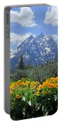 Dm9328-cathedral Group Tetons  Portable Battery Charger
