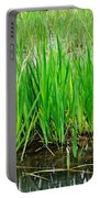 Cattail Green Portable Battery Charger