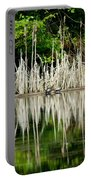 Cattail Reflection Portable Battery Charger