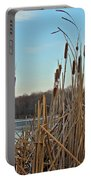 Cattails At Skymount Pond Pa Portable Battery Charger