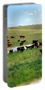 Cattle Graze On Reclaimed Land Portable Battery Charger