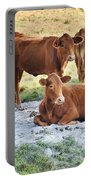 Cattle Siesta Portable Battery Charger
