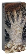 Cave Art: Pech Merle Portable Battery Charger