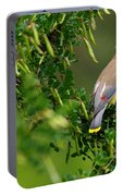 Cedar Waxwing #1 Portable Battery Charger