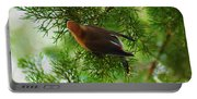 Cedar Waxwing Beauties 1 Portable Battery Charger
