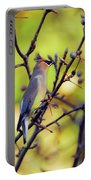 Cedar Waxwing With Windblown Crest Portable Battery Charger