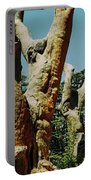 Cedars Of God Jesus Tree  Portable Battery Charger