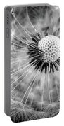 Celebration Of Nature In Black And White Portable Battery Charger