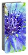 Centaurea Cyanus 1 Portable Battery Charger