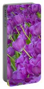 Central Park Spring-purple Tulips Portable Battery Charger