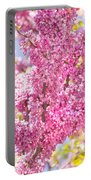 Cercis European Portable Battery Charger