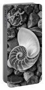 Chambered Nautilus Shell  On River Stones Portable Battery Charger