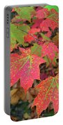 Changing Colors Portable Battery Charger