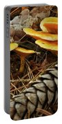 Chanterell Mushrooms  Portable Battery Charger