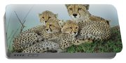 Cheetah And Her Cubs Portable Battery Charger