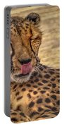 Cheetah Cattitude Portable Battery Charger