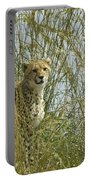 Cheetah Cub In Grass Portable Battery Charger