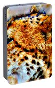 Cheetah IIi Portable Battery Charger