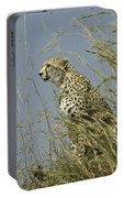 Cheetah Lookout Portable Battery Charger