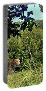 Cheetah Zoo Landscape Portable Battery Charger