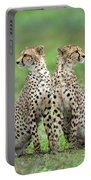 Cheetahs Acinonyx Jubatus In Forest Portable Battery Charger
