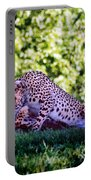 Cheetahs In Love Portable Battery Charger