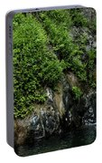 Chemisal Falls At Vichy Springs In Ukiah In Mendocino County, California Portable Battery Charger