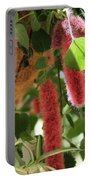 Chenille Caterpillar Plant Portable Battery Charger