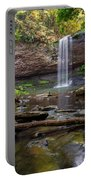 Cherokee Falls - Cloudland State Park Georgia Portable Battery Charger