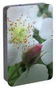 Cherokee Rose Dover Nh  Portable Battery Charger