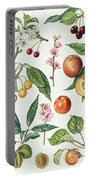 Cherries And Other Fruit-bearing Trees  Portable Battery Charger