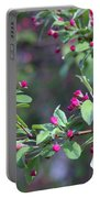 Cherry Blossom Blooms Portable Battery Charger