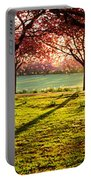 Cherry Blossom In A Park At Dawn Portable Battery Charger