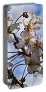 Cherry Blossom Tree Portable Battery Charger