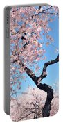 Cherry Blossom Trilogy II Portable Battery Charger