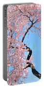 Cherry Blossom Trilogy IIi Portable Battery Charger