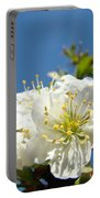 Cherry Blossoms Art White Spring Tree Blossom Baslee Troutman Portable Battery Charger