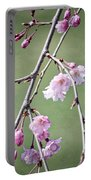 Cherry Blossoms In Early Spring Portable Battery Charger