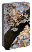 Cherry Blossoms Portable Battery Charger by Megan Cohen