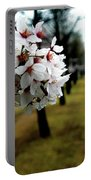 Cherry Blossoms Trail Portable Battery Charger
