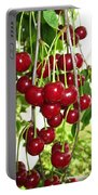 Cherry Time Portable Battery Charger