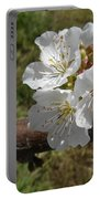 Cherry Tree Blossom White Flower Portable Battery Charger