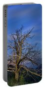 Centenary Chestnut At Blue Hour Portable Battery Charger