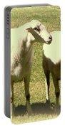 Cheviot Sheep Portable Battery Charger